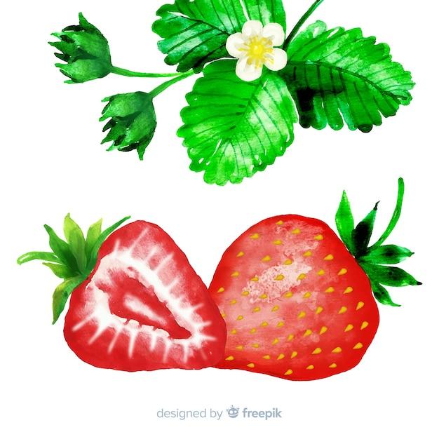 Fresas en acuarela vector gratuito