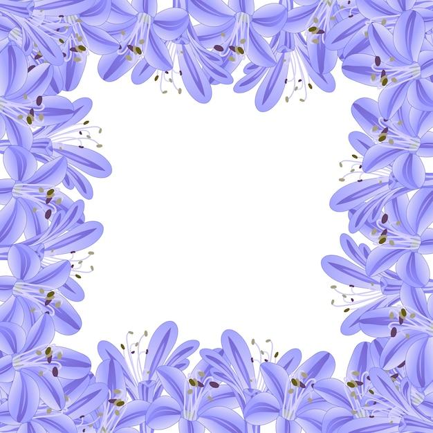 Frontera de agapanthus azul púrpura Vector Premium