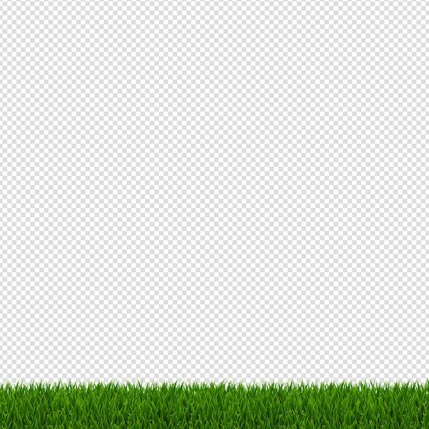 Frontera de hierba verde de primavera Vector Premium