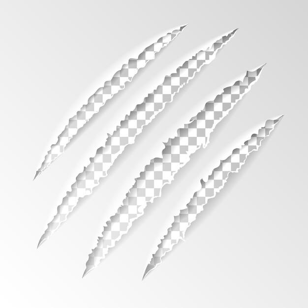 Garras de arañazos realistas de animal con fondo transparente Vector Premium
