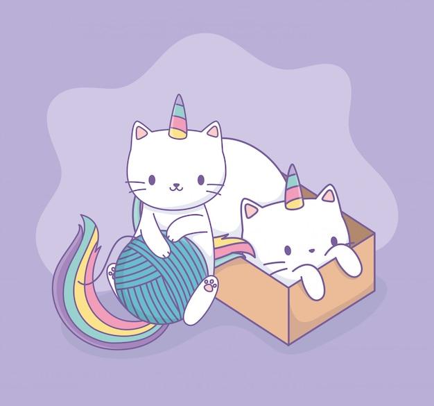Gatos lindos con cola de arcoiris y personajes kawaii de caja de cartón Vector Premium