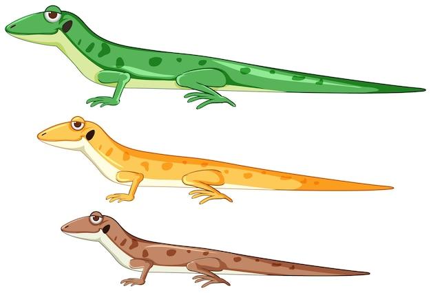 Geckos o lagartos en estilo de dibujos animados de diferentes colores aislados vector gratuito