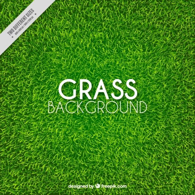 Genial fondo de hierba realista vector gratuito