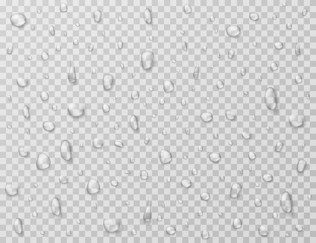 Gotas de agua . salpicaduras de gotas de lluvia, gotas en la ventana de cristal transparente. textura de la gota de agua Vector Premium