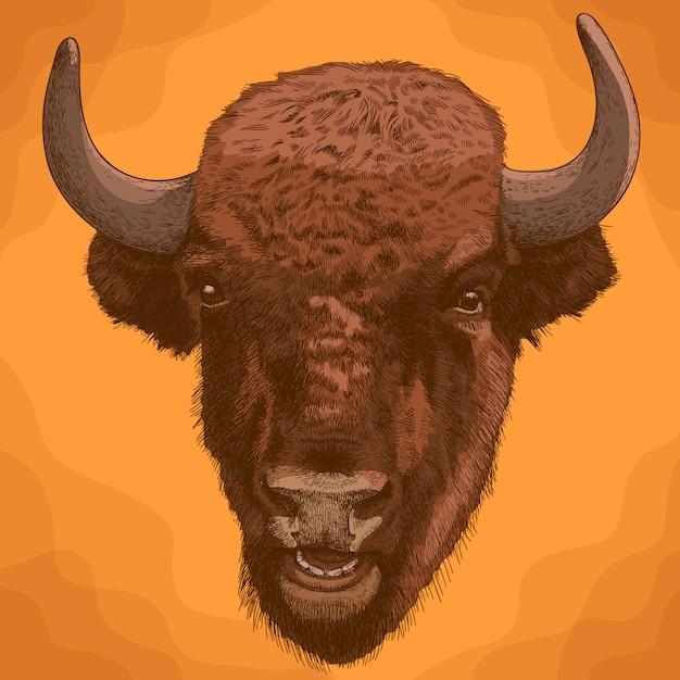 Grabado ilustración antigua de cabeza de bisonte Vector Premium