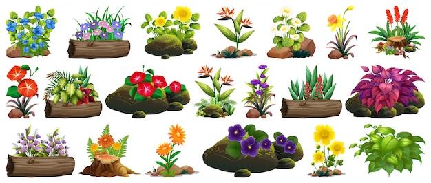 Gran conjunto de flores de colores sobre rocas y madera. vector gratuito