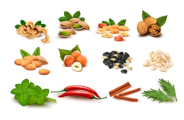 Gran conjunto de nueces maduras y semillas y especias. Vector Premium