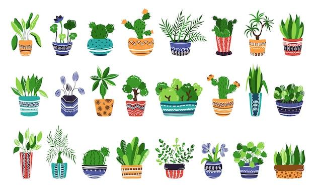 Gran conjunto de plantas caseras en macetas o flores en macetas. Vector Premium