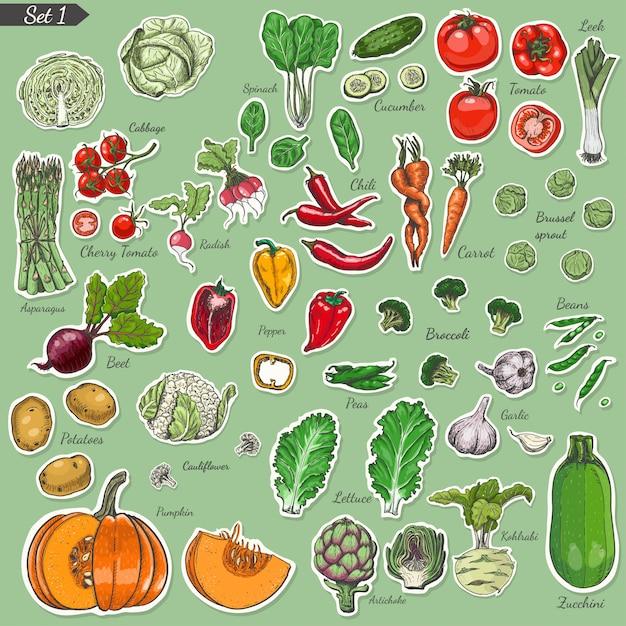 Gran conjunto de vegetales de etiquetas de colores. Vector Premium