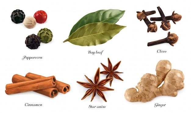 Grano de pimienta, laurel, clavo seco, canela casia, anís estrellado, raíz de jengibre. objetos realistas 3d Vector Premium