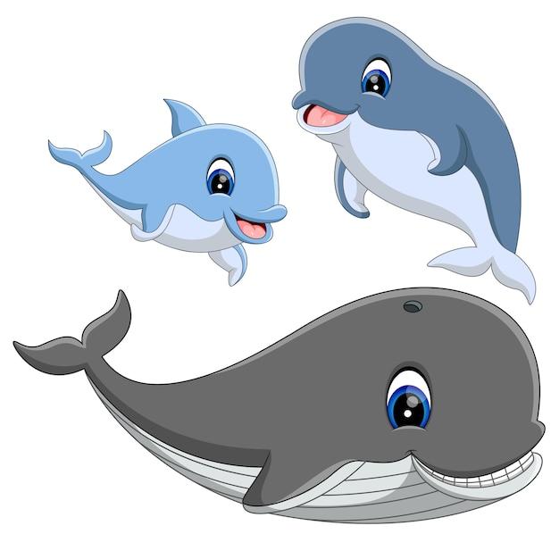 Un grupo de lindos dibujos animados de delfines y ballenas ...