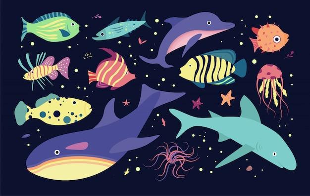 Habitantes del mundo submarino. peces y medusa, delfín, asesino, tiburón ballena. Vector Premium