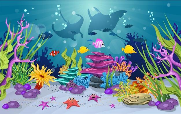 Hábitats marinos y la belleza de los arrecifes de coral | Descargar ...