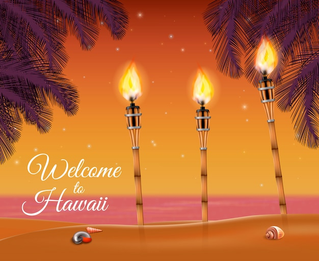 Hawaii beach torch vector gratuito