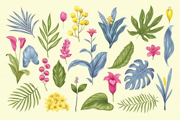 Hermosa colección floral vintage dibujada a mano Vector Premium