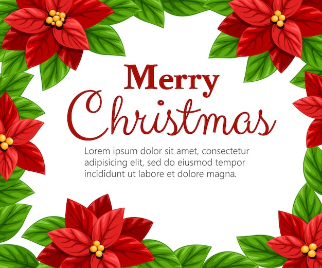 Hermosa flor de nochebuena roja y hojas verdes ilustración de decoración navideña sobre fondo blanco con lugar para el texto Vector Premium