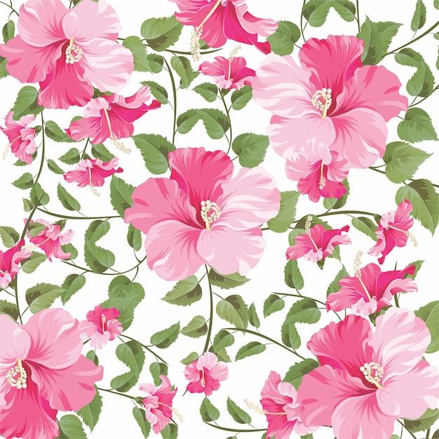 Hermoso patrón de flores de hibisco Vector Premium