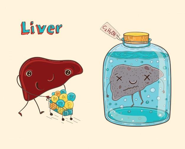 Hígado humano de personaje de dibujos animados Vector Premium
