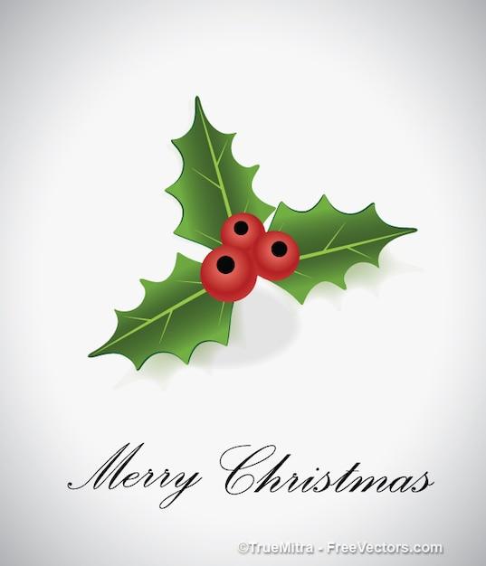 Hoja de navidad con frutos rojos | Descargar Vectores gratis