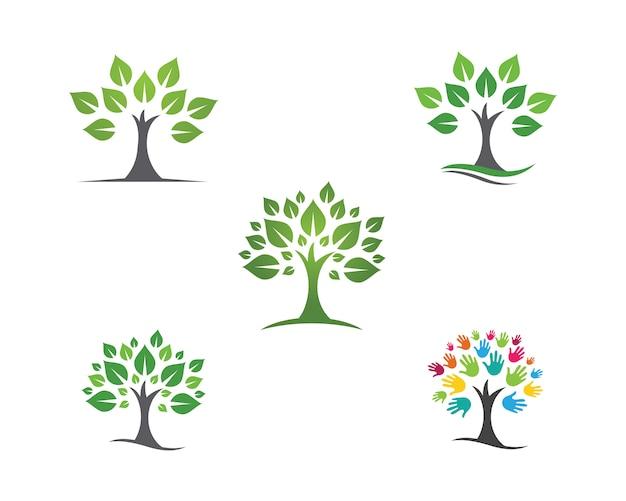 Hoja ecología naturaleza logo template Vector Premium