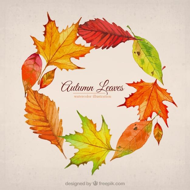 Hojas de oto o ilustraci n descargar vectores premium - Descargar autumn leaves ...
