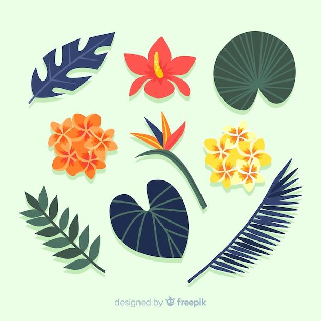 Hojas y flores tropicales en diseño plano vector gratuito