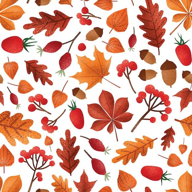 Hojas de otoño y patrones sin fisuras de bayas. follaje de la temporada de otoño con diseño de papel tapiz de bellotas. fresas rojas, uchuvas y bayas de escaramujo. papel de regalo botánico, estampado textil. Vector Premium