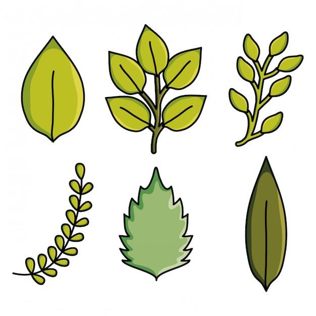 Hojas plantas jardín naturaleza patrón Vector Premium