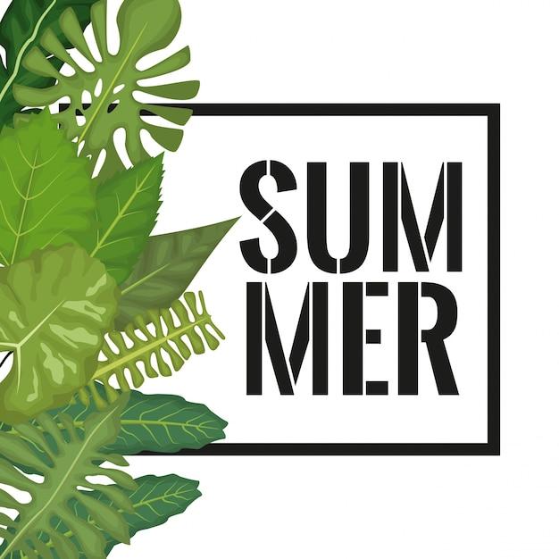 Hojas verdes y marco rectangular con texto de verano | Descargar ...