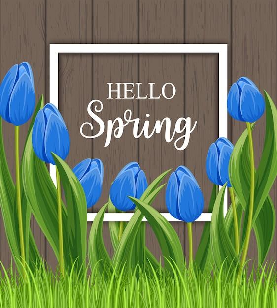 Hola tarjeta de primavera con tulipán floreciente con marco Vector Premium
