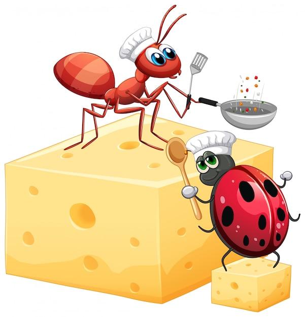 Hormiga y mariquita sobre el queso vector gratuito
