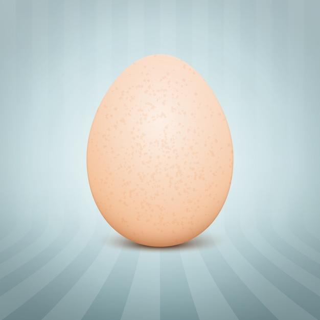 Huevo realista vector gratuito