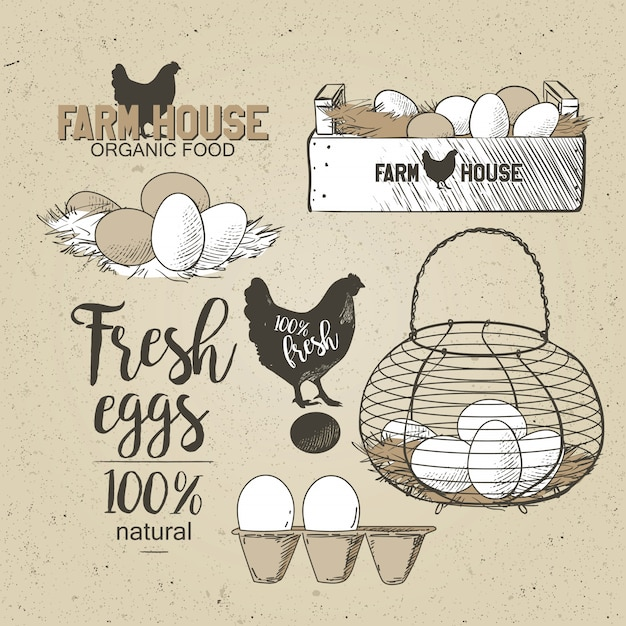 Huevos en el alambre vintage francés Vector Premium