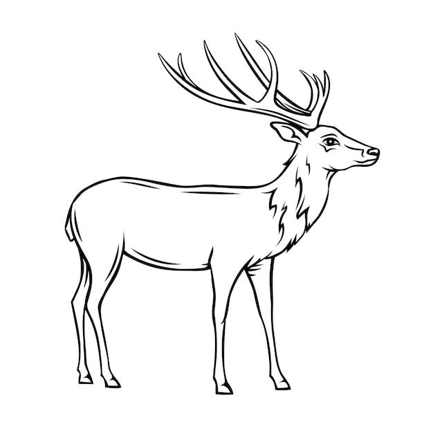 Icono de ciervo. insignia de contorno de reno salvaje. animal de zoológico. Vector Premium