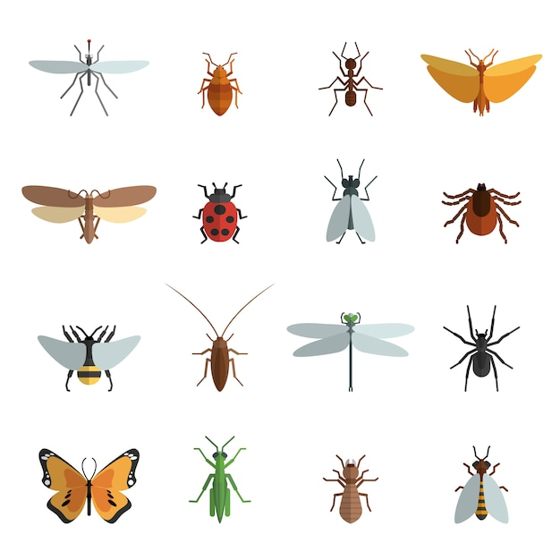 Icono de insecto plano vector gratuito