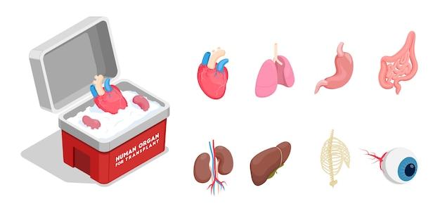 Iconos isométricos con diferentes órganos humanos donantes para trasplante aislado sobre fondo blanco 3d vector gratuito