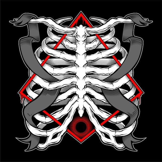 Ilustración de la caja torácica humana. ilustración vectorial anatómica Vector Premium