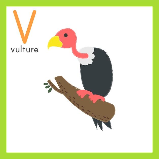 Ilustración, dibujo, estilo, conjunto, de, fauna vector gratuito