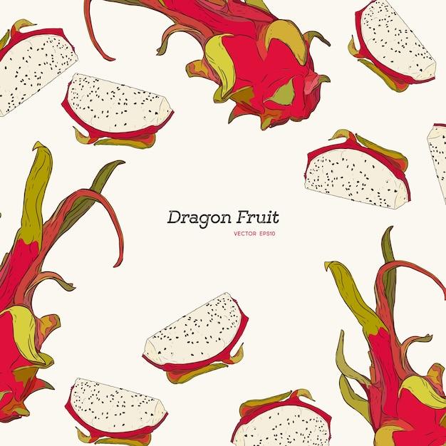 Ilustración de estilo grabado. marco de fruta de dragón vintage ...