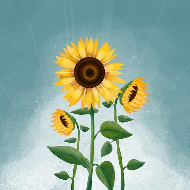 Ilustración de flor de sol Vector Premium