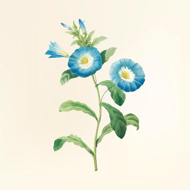 Ilustración de la flor de la vendimia vector gratuito