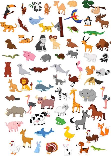 Ilustración de gran conjunto de dibujos animados de animales Vector Premium