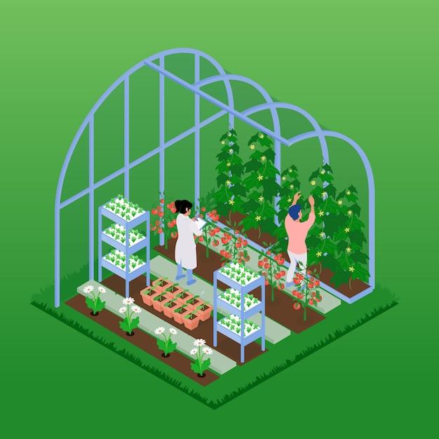 Ilustración isométrica de invernadero vector gratuito