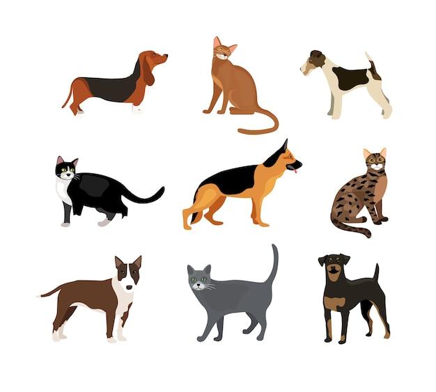 Ilustración de vector de perros y gatos que muestra diferentes razas, incluido un rottweiler fox terrier, sabueso, pastor alemán y pitbull y diferentes colores de piel en los gatos vector gratuito