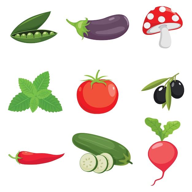 Ilustración de vector de verduras Vector Premium