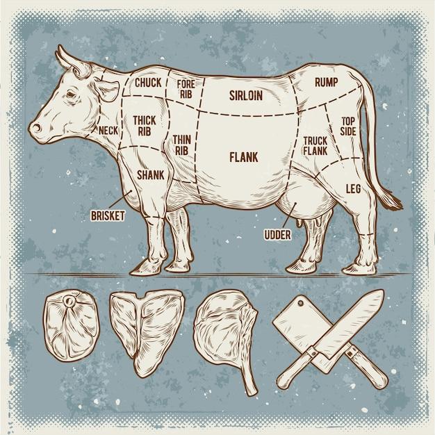 Ilustración vectorial establecer recortes de carne de vacuno. vector gratuito