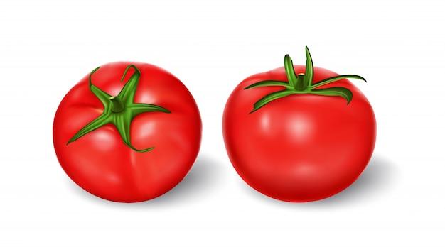 Ilustración vectorial de un estilo realista conjunto de tomates frescos rojos con tallos verdes vector gratuito