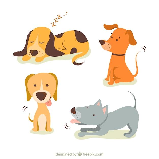 Sueno Perro Fotos Y Vectores Gratis