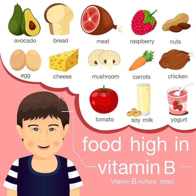 Ilustrador De Alimentos Ricos En Vitamina B Vector Premium