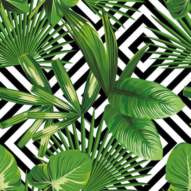 Imprimir verano exótico planta de selva tropical hojas de palma modelo, vector floral inconsútil en el fondo geométrico blanco negro. fondo de pantalla de la naturaleza. Vector Premium